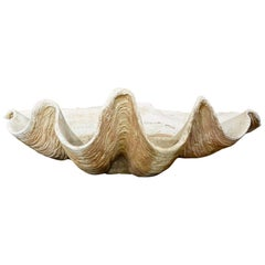 Large Italian Scagliola Shell