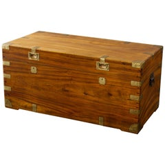 Large Late 19th Century Brass Bound Camphor Wood Trunk