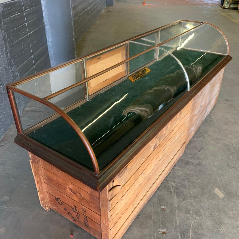 Large Late Victorian Shop Display Case, Museum, Collector's Cabinet For Sale 6