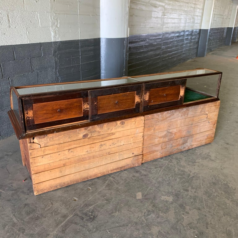 Large Late Victorian Shop Display Case, Museum, Collector's Cabinet For Sale 11