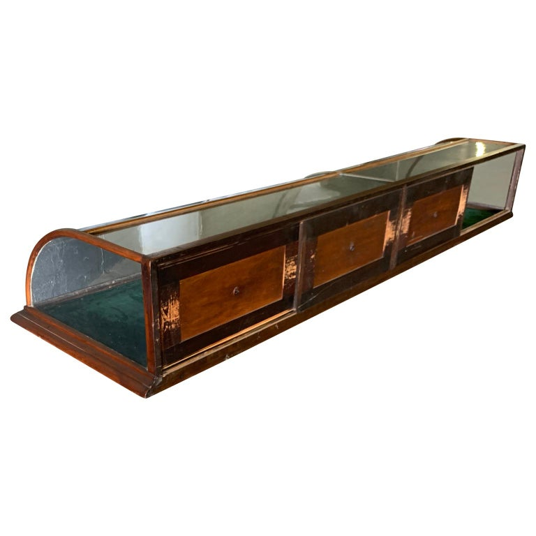 English Large Late Victorian Shop Display Case, Museum, Collector's Cabinet For Sale
