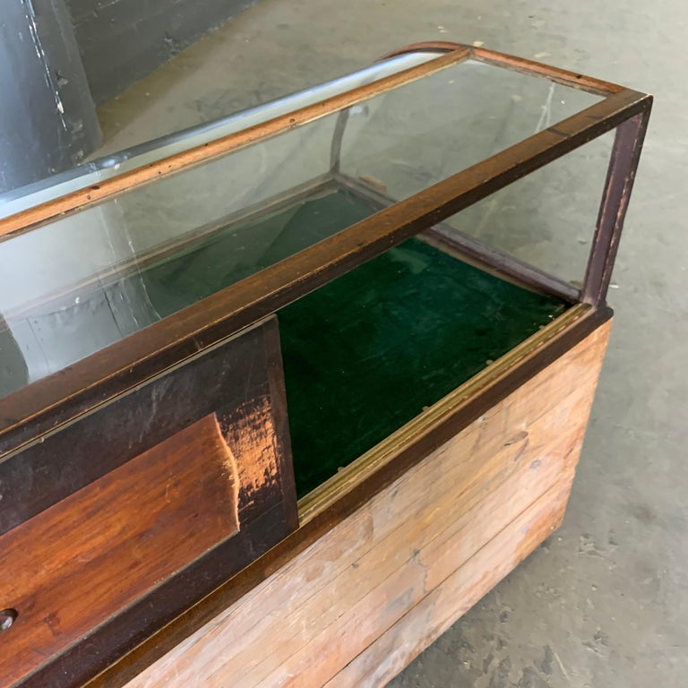 Large Late Victorian Shop Display Case, Museum, Collector's Cabinet For Sale 1