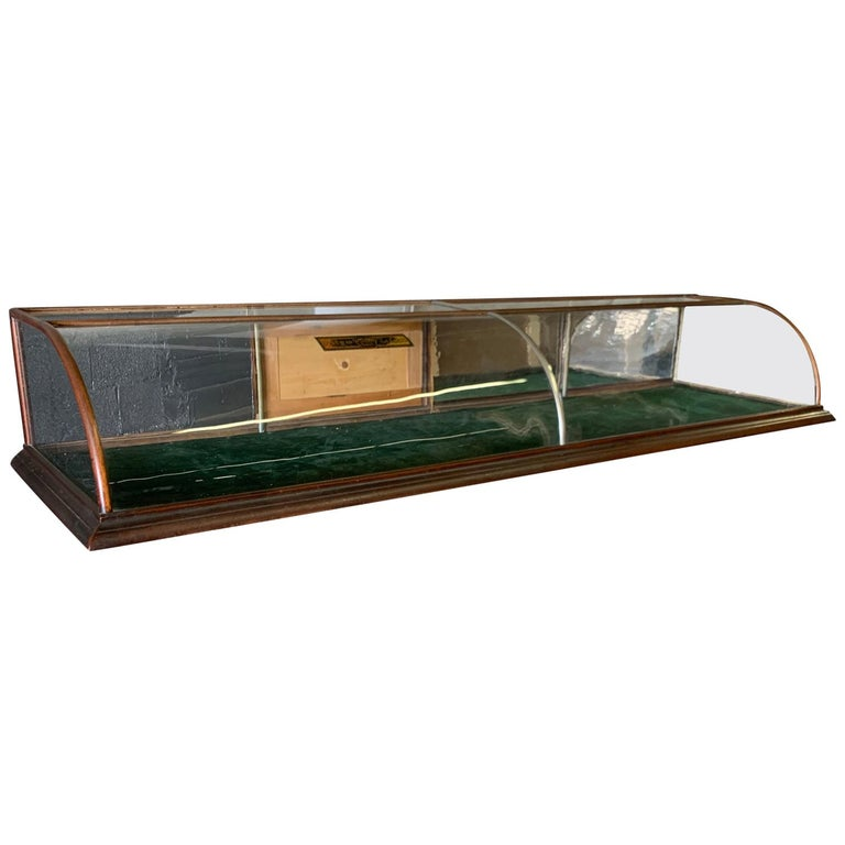 Large Late Victorian Shop Display Case, Museum, Collector's Cabinet For Sale