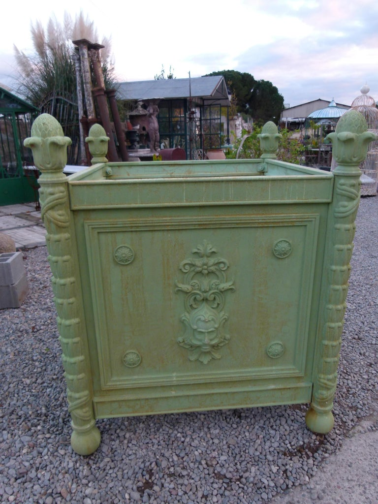 Large Louis XV Style Cast Iron Jardinières For Sale 13