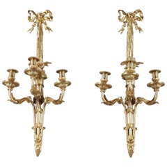 Large Louis XVI-Style Wall Sconces