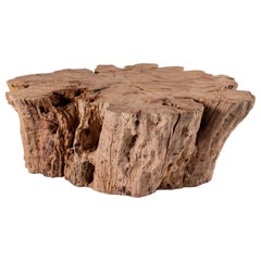 Large Lychee Wood Organic Form Coffee Table