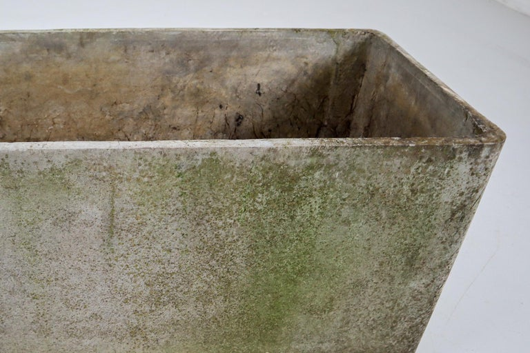 Mid-Century Modern Large Midcentury Planter by Swiss Architect Willy Guhl for Eternit, 1960s For Sale