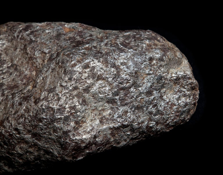 Large Muonionalusta Meteorite from Sweden In Excellent Condition For Sale In London, GB