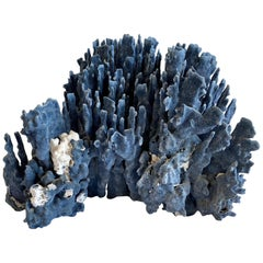 Large Natural Blue Coral