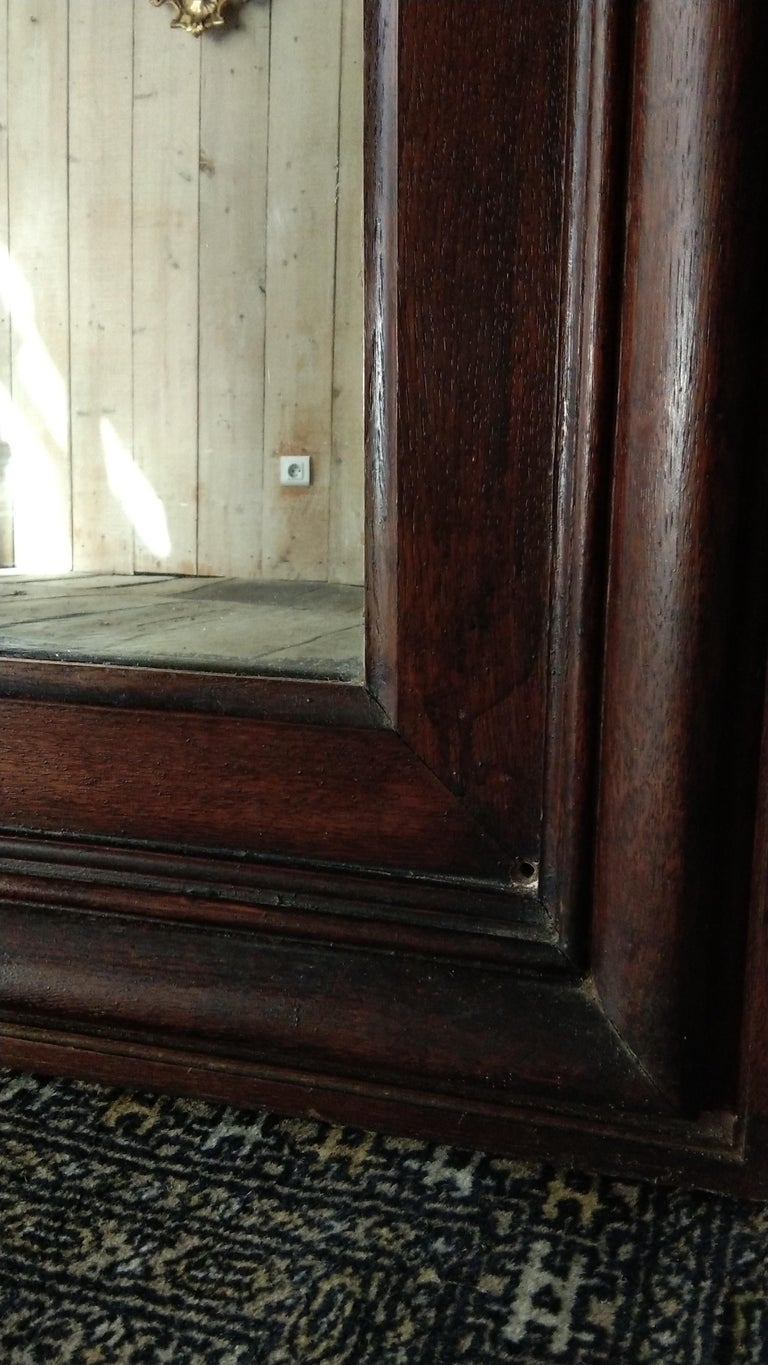 French Large Oak Mirror, France, 19th Century For Sale