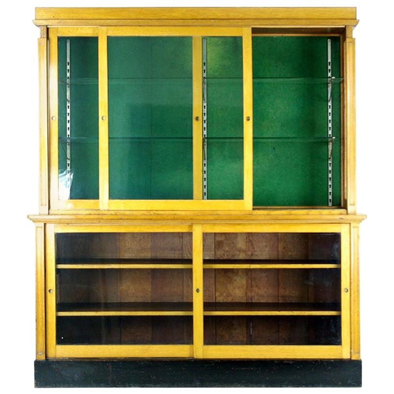 Large Oak Showcase, Apothecary Cabinet, China Display Cabinet, 1920, B398  At 1stdibs