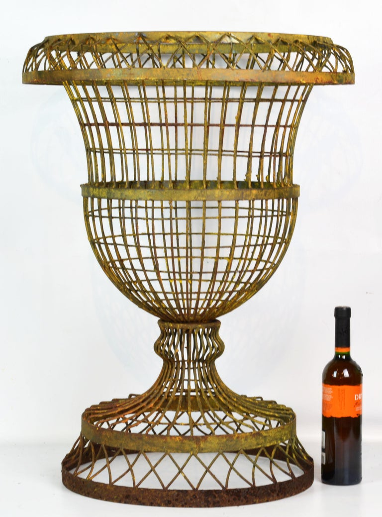 Standing 32 inches tall this French style wire garden urn is spectacular. The urn planter has formerly been painted. The paint has been partially removed leaving the urn with a beautiful distressed look.
