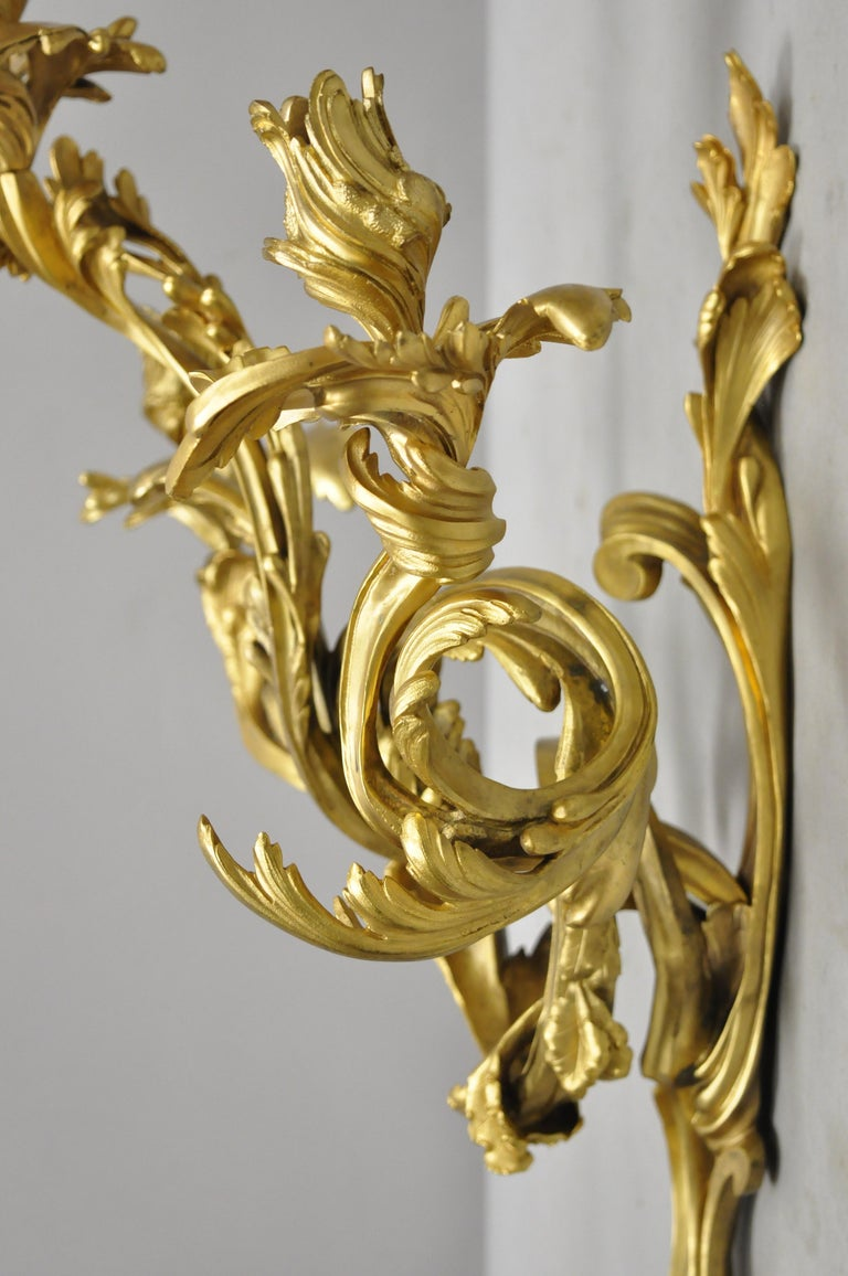 20th Century Large Pair of Antique French Rococo Gold Gilt Dore Bronze Candle Wall Sconces For Sale