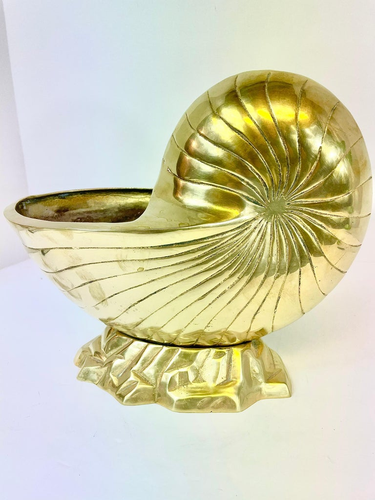 20th Century Large Pair of Brass  Seashell Nautilus For Sale