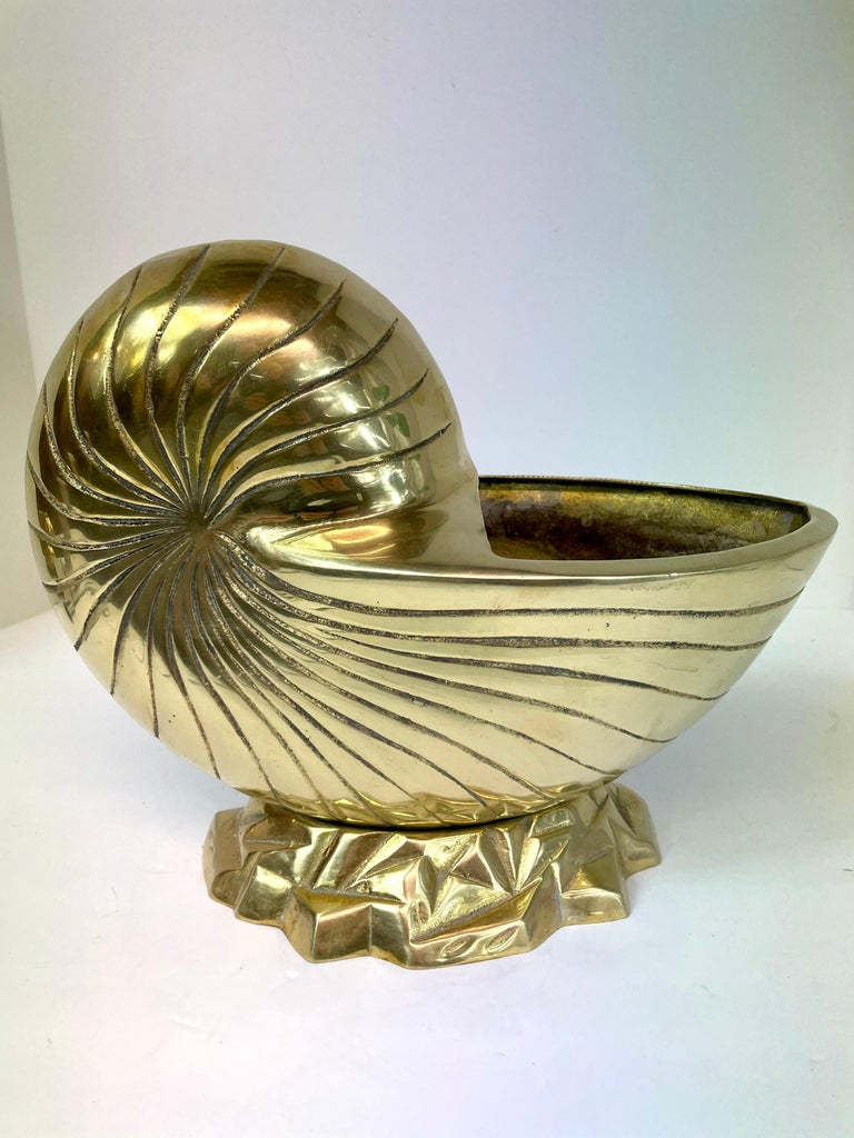 Large Pair of Brass  Seashell Nautilus For Sale 2
