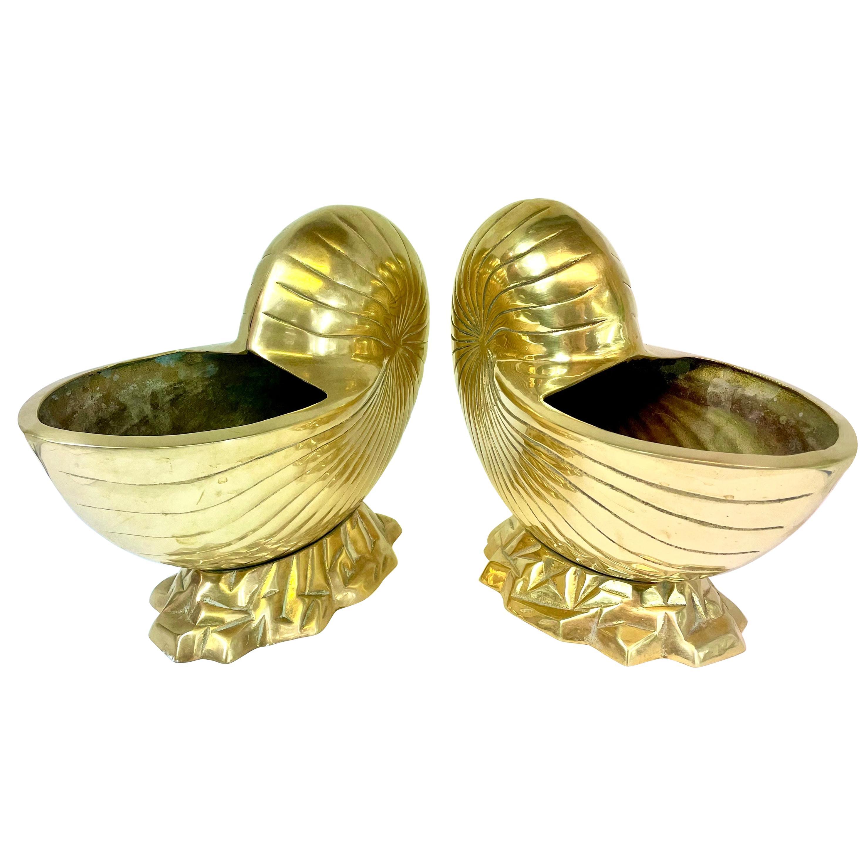 Large Pair of Brass  Seashell Nautilus