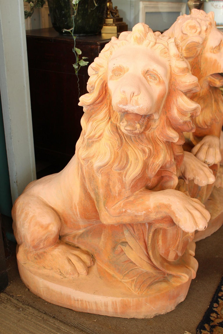 Large pair of cast stone garden lions with terracotta color, approximately 20-40 years old.
