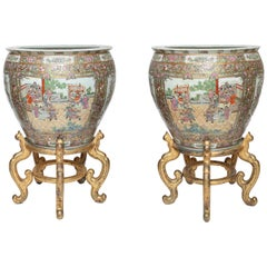 Large Pair of Chinese Export Famille Rose Fish Bowls with Giltwood Stands