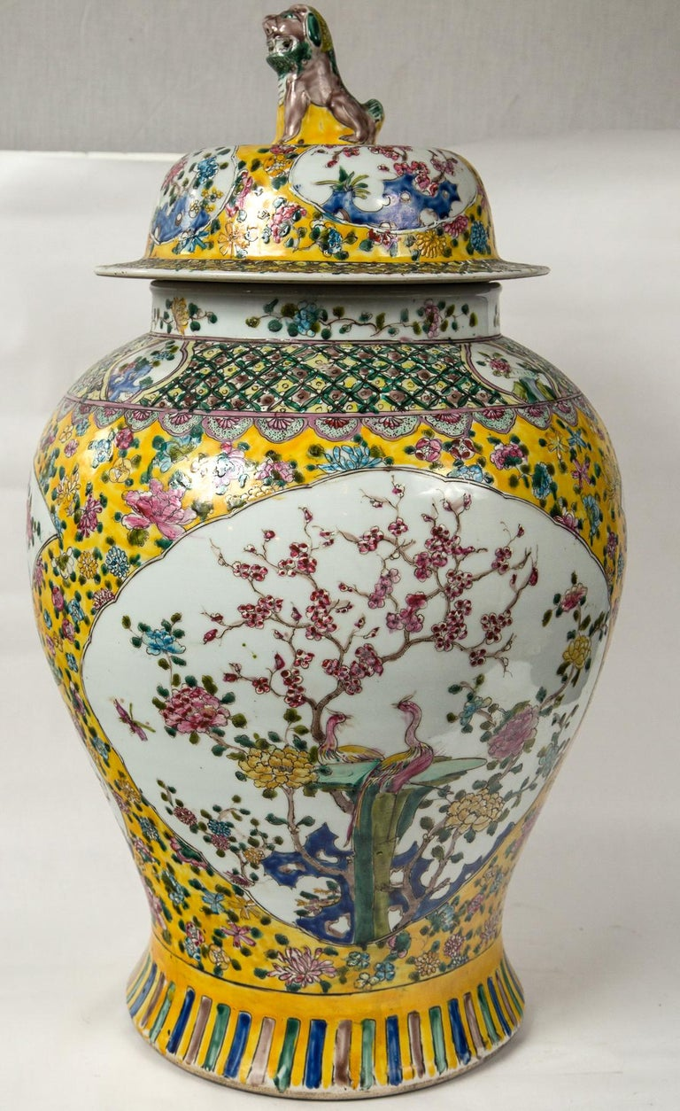 Large Pair of Chinese Porcelain Covered Jars For Sale 4
