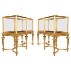 Large Pair of Late Victorian Giltwood Museum Cabinets