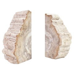 Large Petrified Wood Handcrafted Bookends of Organic Origin