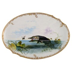 Large Pirkenhammer Serving Dish in Porcelain with Hand-Painted Fish, Early 20th