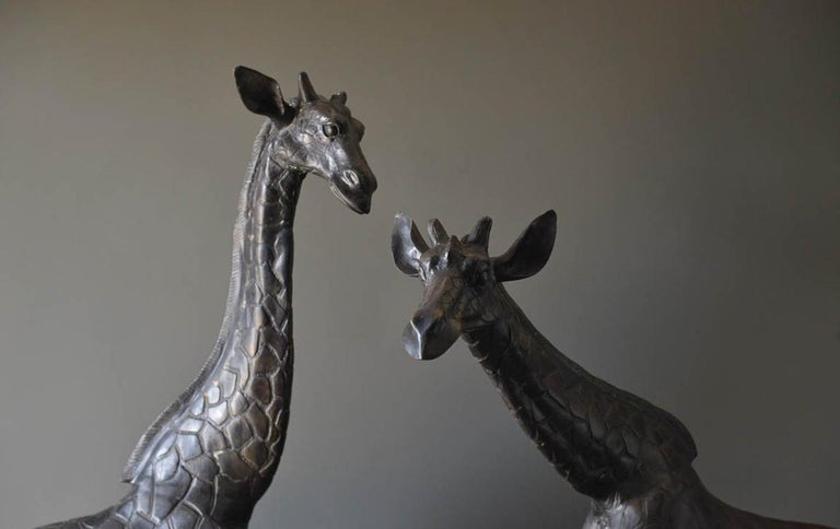 Lifesize pair of bronze Giraffe Statues, circa 1970. One owner from a prominent waterfront home in Newport Beach, CA. Original condition with beautiful patina to the bronze. Male and Female statues, sold as a pair only. Heavy, cast bronze in very
