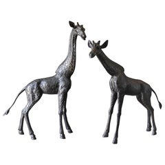Large Scale Pair of Bronze Giraffe Statues, circa 1970