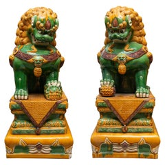 Large Scale Pair of Colorful Foo Dogs