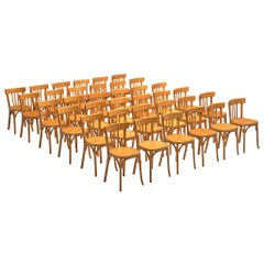 Large Set of Baumann Dining Chairs in Beechwood, France, 1970s