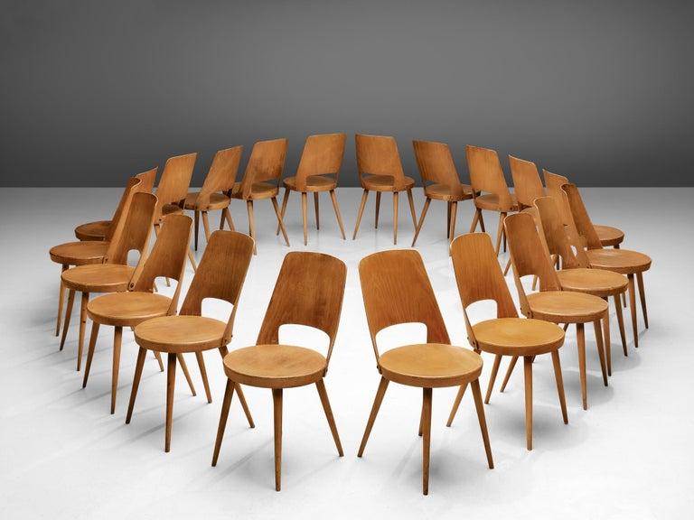 Mid-Century Modern Large Set of Baumann 'Mondor' Chairs  For Sale