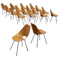 Large Set of Eighteen Duo Tone 'Medea' Dining Chairs by Vittorio Nobili