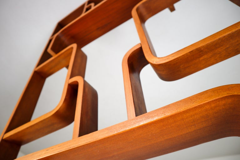 Large Set of Mahogany Color Midcentury Room Dividers in Bentwood, circa 1960s For Sale 3