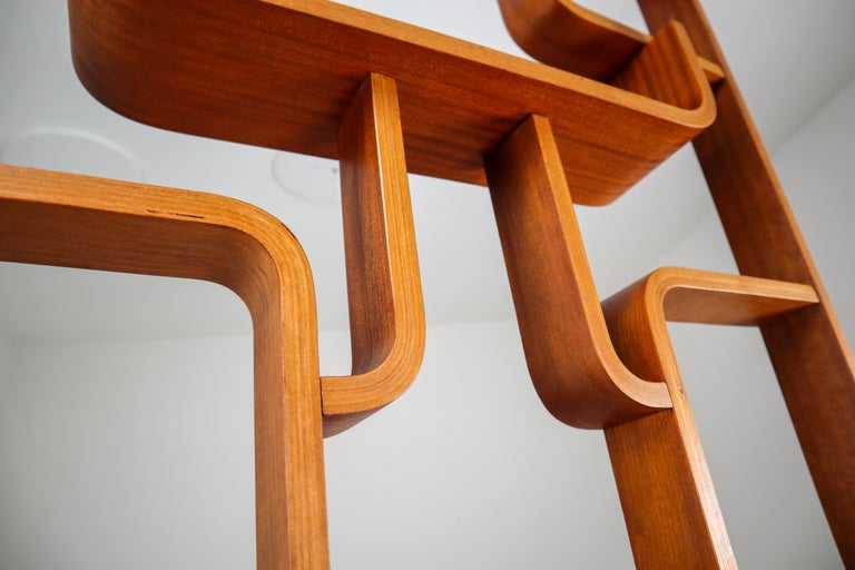 Large Set of Mahogany Color Midcentury Room Dividers in Bentwood, circa 1960s For Sale 7