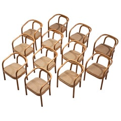 Large Set of Twelve Bentwood Dining Chairs by Ton, 1960s