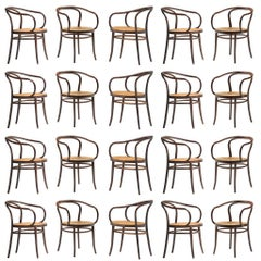 Large Set of Twenty Bentwood Armchairs by Ton, 1960s