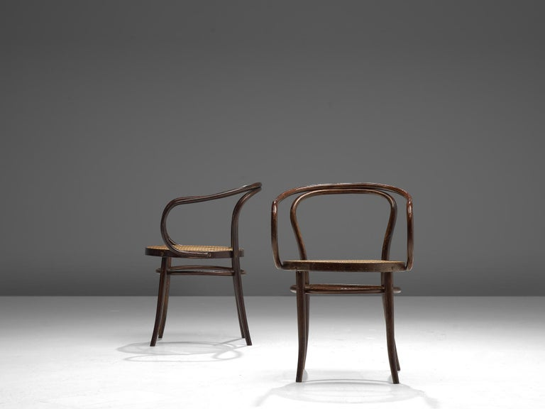 Large Set of Twenty Bentwood Armchairs by Ton, 1960s For Sale 3