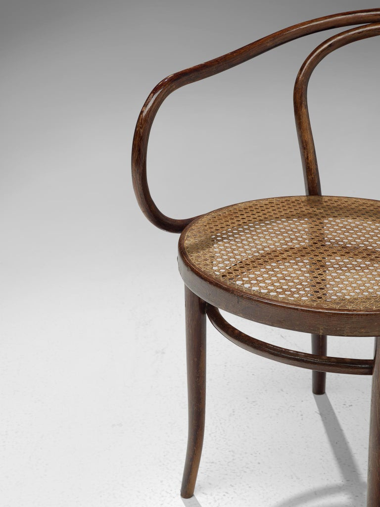 Large Set of Twenty Bentwood Armchairs by Ton, 1960s For Sale 6
