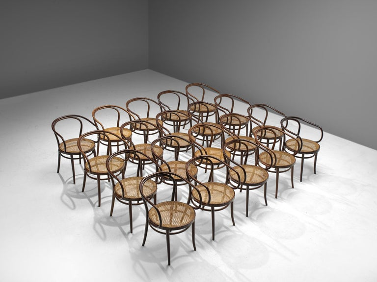 Mid-Century Modern Large Set of Twenty Bentwood Armchairs by Ton, 1960s For Sale