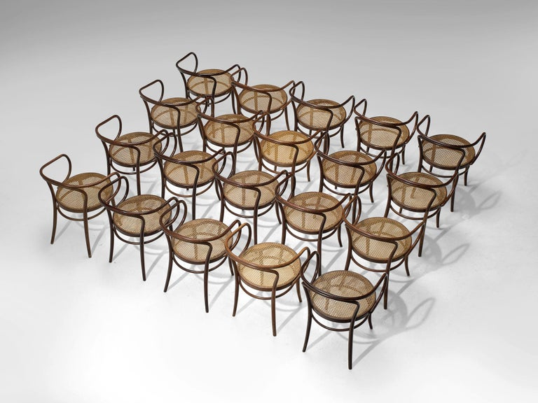 Large Set of Twenty Bentwood Armchairs by Ton, 1960s In Good Condition For Sale In Waalwijk, NL