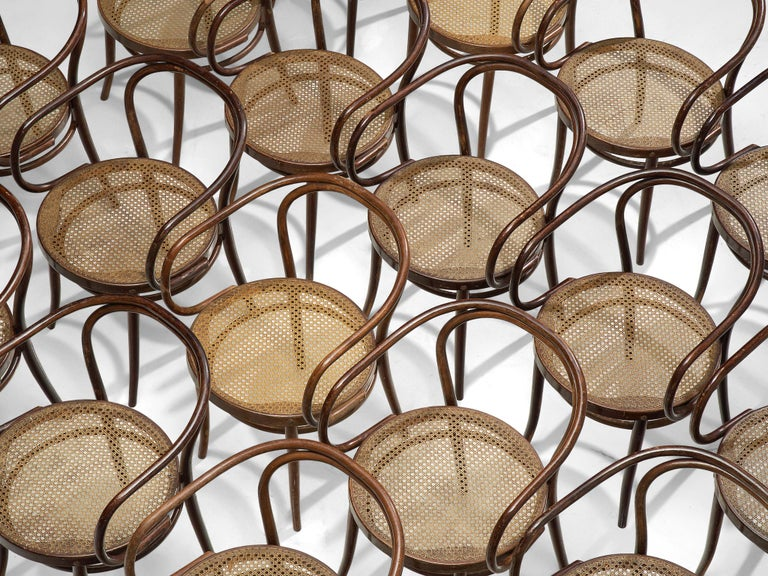 Mid-20th Century Large Set of Twenty Bentwood Armchairs by Ton, 1960s For Sale
