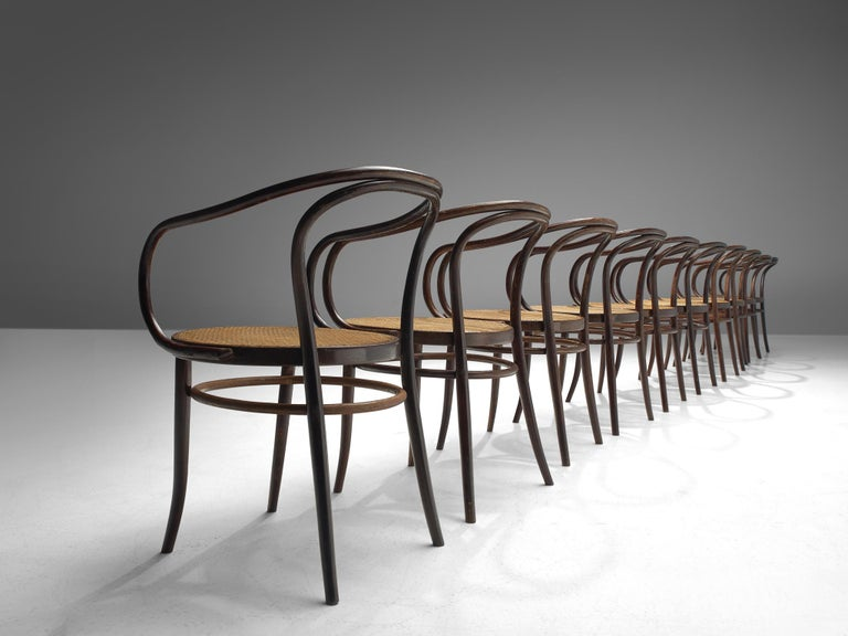 Cane Large Set of Twenty Bentwood Armchairs by Ton, 1960s For Sale