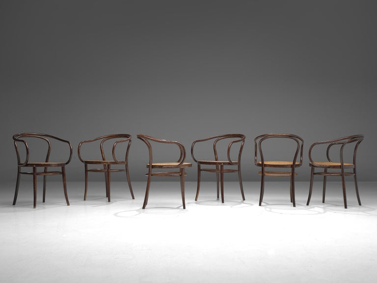 Large Set of Twenty Bentwood Armchairs by Ton, 1960s For Sale 1