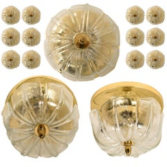 Large Set Wall Lights/ Flush Mounts Tulip Shaped by Limburg, 1970s
