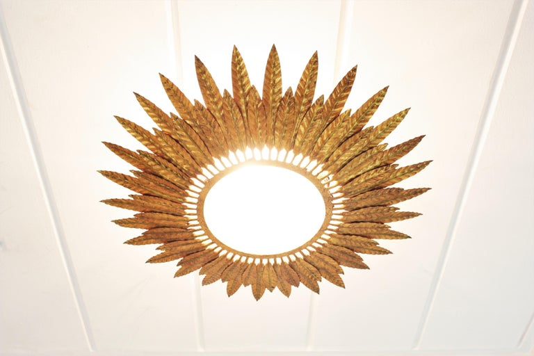 Large Spanish Sunburst Leafed Light Fixture in Gilt Metal with Frosted Glass For Sale 6