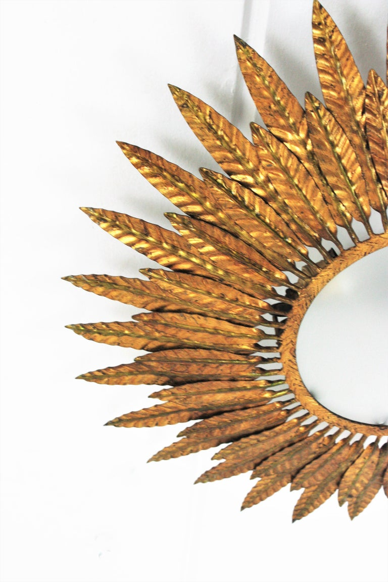 Large Spanish Sunburst Leafed Light Fixture in Gilt Metal with Frosted Glass For Sale 7