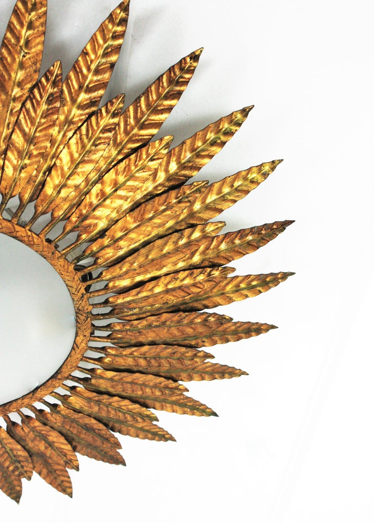 Large Spanish Sunburst Leafed Light Fixture in Gilt Metal with Frosted Glass For Sale 8