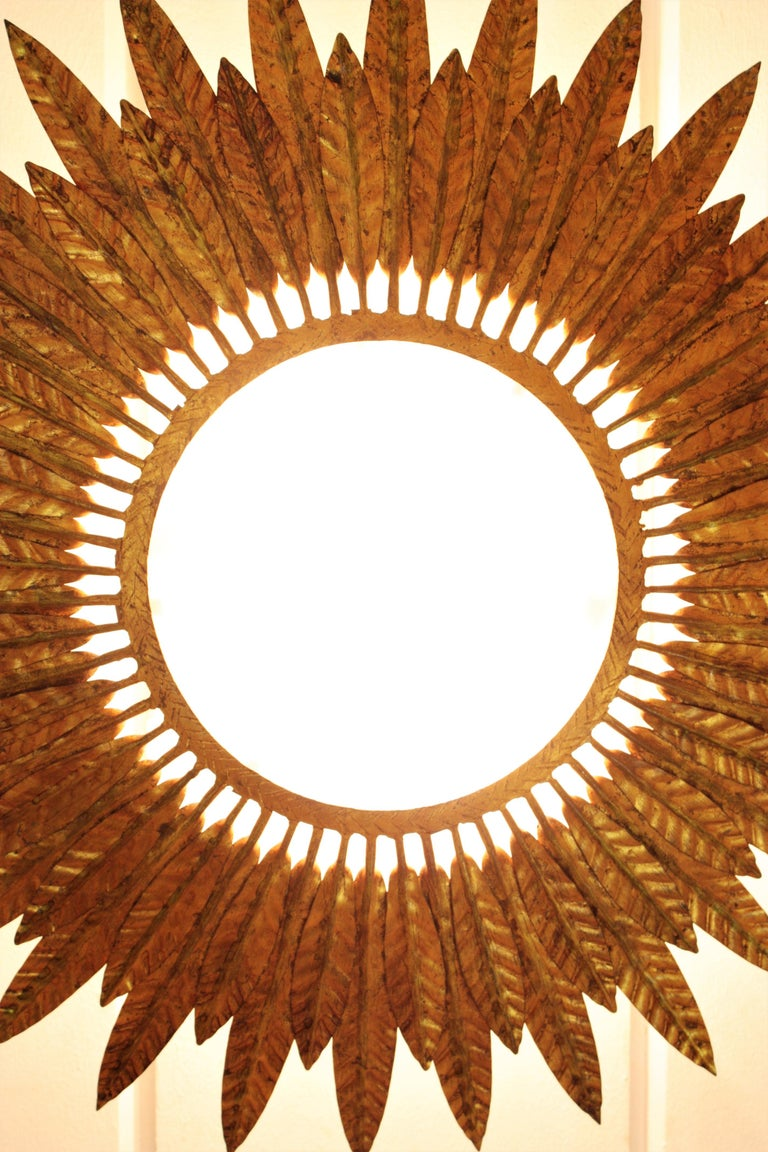 Large Spanish Sunburst Leafed Light Fixture in Gilt Metal with Frosted Glass For Sale 9