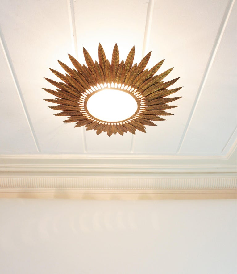 Large Spanish Sunburst Leafed Light Fixture in Gilt Metal with Frosted Glass In Good Condition For Sale In Barcelona, ES