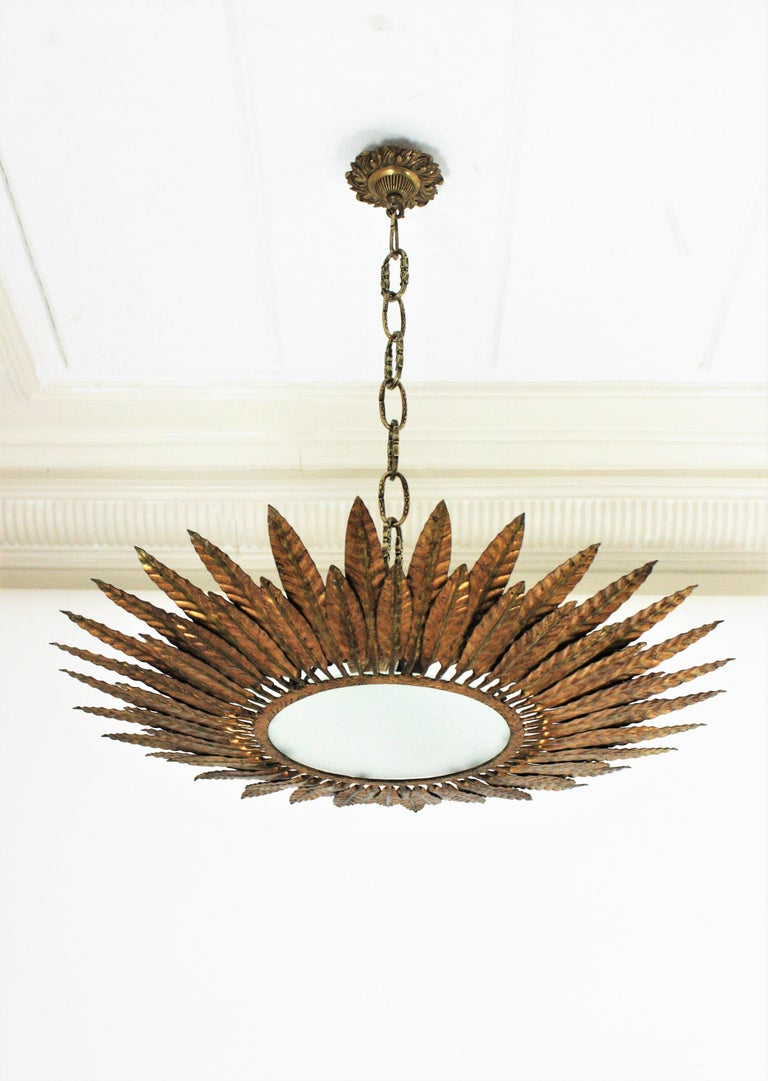 Large Spanish Sunburst Leafed Light Fixture in Gilt Metal with Frosted Glass For Sale 4